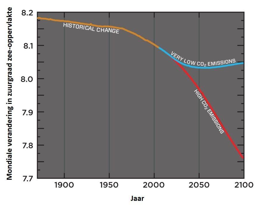 Grafiek: mondiale verandering in zuurgraad zee-oppervlakte