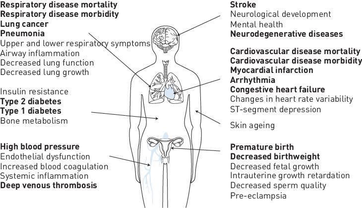 Overzicht van gezondheidsproblemen en biomarkers door blootstelling aan luchtvervuiling