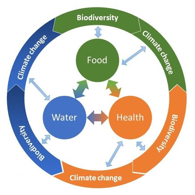 Schema: Biodiversiteit en klimaatverandering